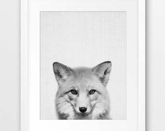Fox Print, Woodland Nursery Wall Art, Animal Print, Nursery Decor, Black And White Fox Photo, Forest Animal, Kids Room Decor, Printable Art
