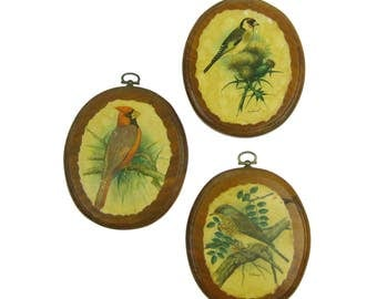 Vintage Set of Three Oval Framed Gommer Bird Prints Wall Art Grouping, Birds Illustrations, Old Fashioned Pictures, Woodland Decor