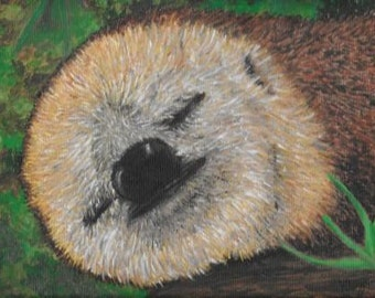 Sloth portrait on box canvas