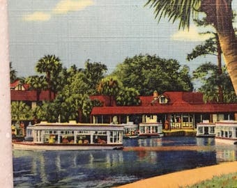 Vintage Postcard  Glass Bottom Boat Silver Springs Fl Glass Bottom Boat Trip Mint Linen