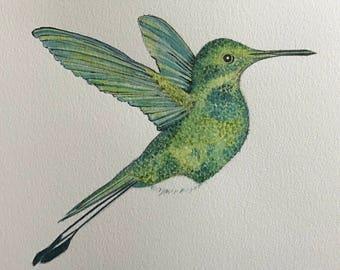 Hummingbird A4 watercolour print