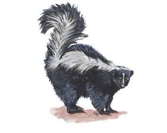 Skunk Digital Print of Original Painting
