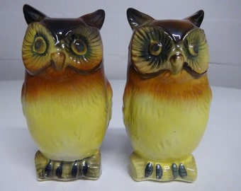 Vintage Ceramic Owl Salt and Pepper Shakers - FREE SHIPPING