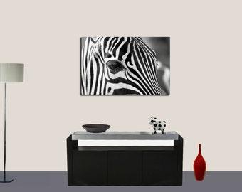 Zebra Wall Decor Poster - Poster Print, Sticker or Canvas Print