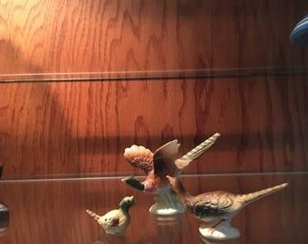Miniature Pheasant Family