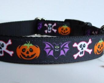 READY TO SHIP! Halloween Dog Collar - Trio of Terror