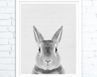 Rabbit Print, Nursery Decor, Rabbit, Nursery Printable, Wall Decorations, Wall Art Decor, woodland nursery, Rabbit Print,Artwork Print