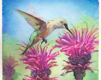 Painting Hummingbird Original Art Bird