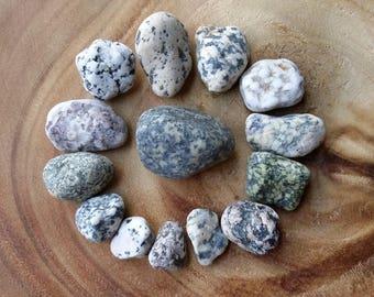 Lot Spotted Stones, Lake Ontario Turtle Stones, Beach Stones with Spots, Orange Purple Green Sea Glass Stones, Pebbles, Rocks ~ st80