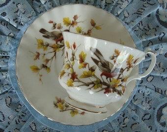 "Royal Albert - Woodland Series ""Robin"" - Bone China England - Vintage Tea Cup and Saucer"
