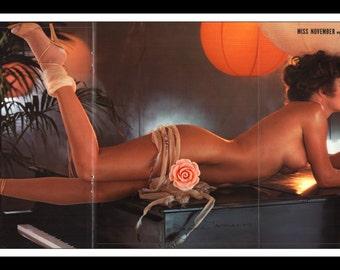 "Mature Playboy November 1980 : Playmate Centerfold Jeana Tomasino Gatefold 3 Page Spread Photo Wall Art Decor 11"" x 23"""