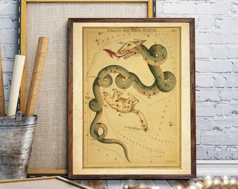 Celestial Star Charts, The constellations Draco and Ursa Minor,  Solar Celestial Vintage Print, Constellations Chart