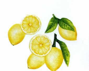 LEMON MAGNETS, (Set of 3), Lemons, Lemon Decor, Kitchen Magnets, Lemonade,  Handmade, Summer, Unique Gifts, Fruits, Citrus Decor, Yellow