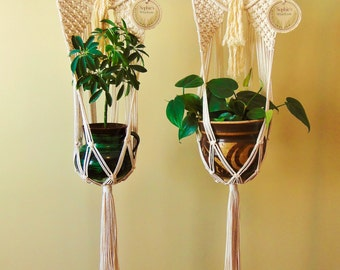Macramé Wall Planter / Twisted Cotton rope & Driftwood / Plant hanger + Wall Hanging all in one / Great Mother's Day gift /