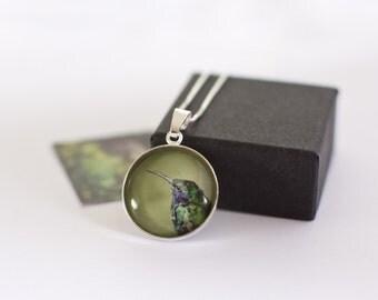 Hummingbird Necklace, Silver Hummingbird Pendant, Gift for Bird Lovers, Hummingbird Jewellery, Gift for Her, Exotic Animal Jewellery