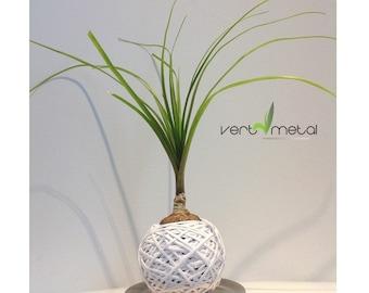White sphere plant kokedama style
