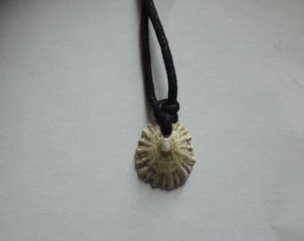 handmade seashell necklace