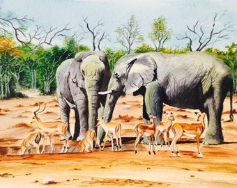 Elephants & Deers
