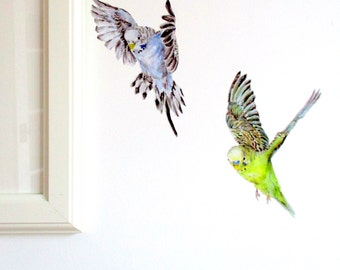 Budgie wall stickers, budgie wall art, budgerigar gifts, budgie illustration, budgie gifts, tropical home decor, bird home decor