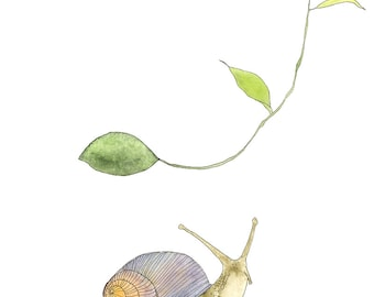 Snail art print, woodland nursery decor, watercolor print, garden art, illustration print