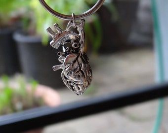 Anatomically correct heart key-ring