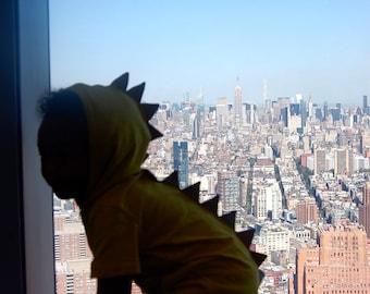 4T, Dino Hoodie, Baby Dino, Toddler Dino, Dino Costume, Baby TRex, Girl Dinosaur, Boy Dinosaur, RAWR, w/ Spikes, Speckled, 4 year clothing