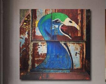 PEACOCK POSTER -  Printable Instant Download - birds - stampa artistica - disegni e illustrazioni - 30x30 cm