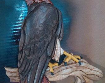 Red Tail Hawk #55