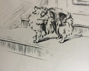 Vintage Pomeranian Print - Shakespeare at the Kennels - Persis Kirmse, 1934