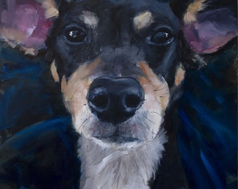 """Jack Russell Terrier, Rat Terrier Face, Large 20 x 20"""" Brown, Black, White Original Oil Painting by Clair Hartmann"""