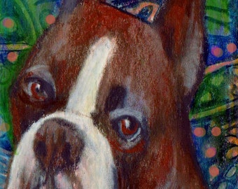 original art  aceo drawing boxer working group Westminster
