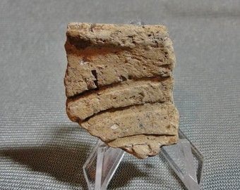 Mississippian Period (Approx  800 AD - 1600 AD) Incised Pottery Rim Shard From Mississippi Delta