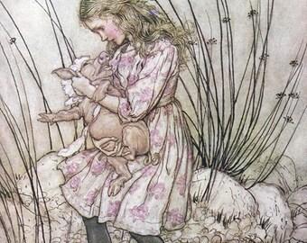 Pig Baby,  Arthur Rackham, Vinatge Art Print
