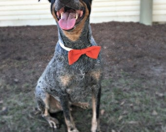 Solid Color Flannel Dog Bow Tie Pet Collar Accessory - Straight Style - Christmas Dog Bowtie - Dog Wedding Attire - Collar Bow - Customize