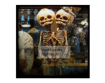 Two Headed Skeleton Photography 5x5 inch Print, Halloween Decor, Conjoined Skull Art, Macabre Art, Oddities