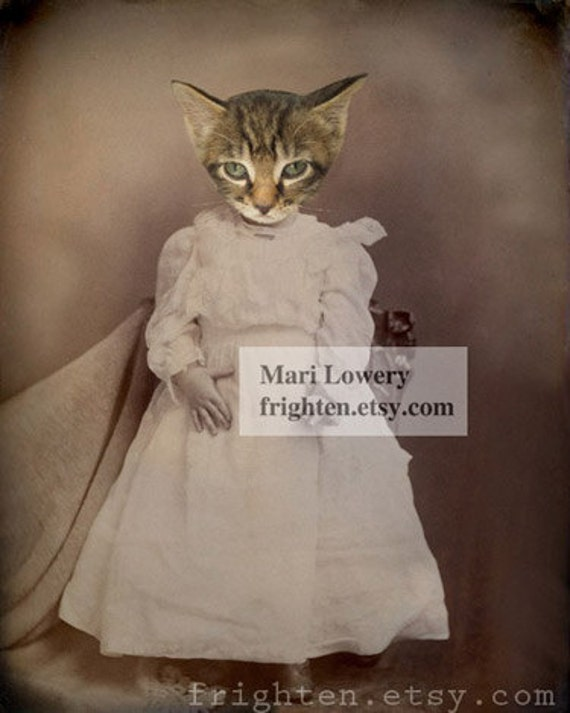 Cat in Dress Mixed Media Collage 8.5 x 11 Inch Art Print