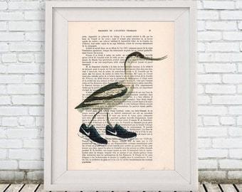 Bird with shoes, Nike, Human Bird, Digital Illustration, Bird with shoes, sport bird, Bird artwork, bird art, Alice in Wonderland