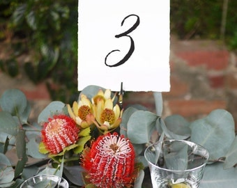 Table Numbers Printable Instant Download 2