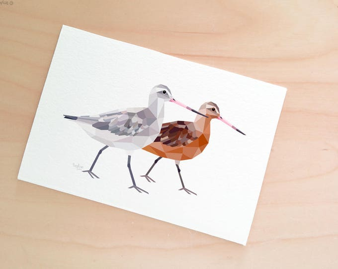 Bar-tailed godwit print, Godwit pair painting, New Zealand birds, Kiwi art, Kiwi artwork, Native NZ birds, Geometric wall art, tinykiwi art