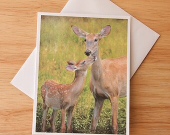 Blank Note Card, Wildlife Card, Greeting Card, Photo Card, Deer Note Card, Blank Photo Card, Deer Photography, Fawn Card, Nature card