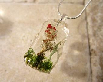 Cladonia bellidiflora and Moss (Dicranum sp.)  Necklace, botanical jewelry, mycology, bryophyte, woodland, clacked ice, fungi, algae, lichen