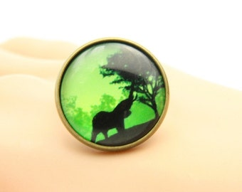 African elephant ring  (2020B)
