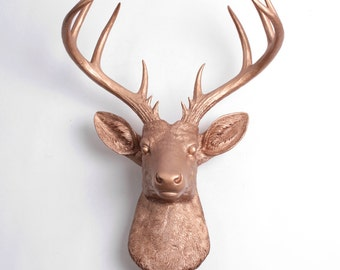 white faux taxidermy deer head decor the by whitefauxtaxidermy. Black Bedroom Furniture Sets. Home Design Ideas