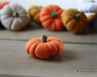SALE Felt pumpkin, autumn decor