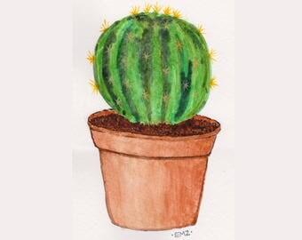 Prickly Cactus - Original Watercolour Illustration