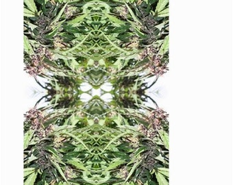 Garden Flag: Marijuana Flag in Williams Wonder Marijuana Print, Cannabis Garden Flag, Cannabis Flag- MADE TO ORDER