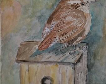Carolina Wren on Birdhouse in Watercolor