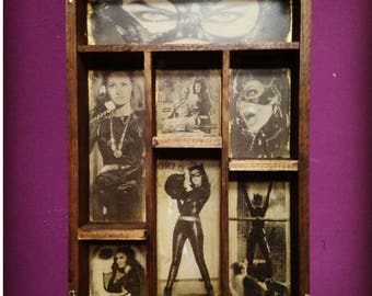 Catwoman Cabinet of curiosities