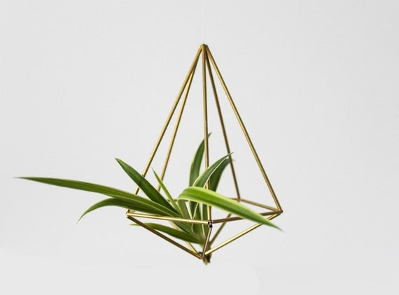 Brass himmeli geometric decor diamond minimalist air plant for Geometric air plant holder