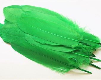 Set of 10 natural green, tinted goose feathers, 15-20 cm